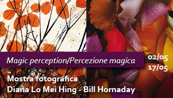 Magic perception / Percezione magica